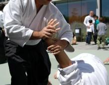 aikido-martial-arts-116543_1280