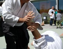 aikido-martial-arts-116543_1280